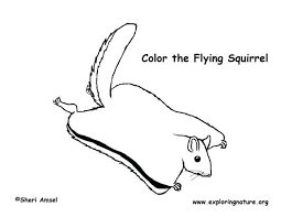 Big Smile Squirrel Coloring Page Pages Halloween Printable Unicorn