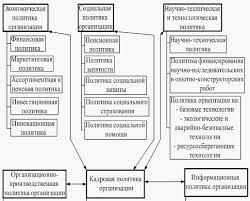 Курсовая работа Основные подходы к определению и этапы  Основные подходы к определению и этапы построения кадровой политики организации