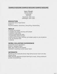 Shidduch Resume 650841 Shidduch Resume Template Example Resume