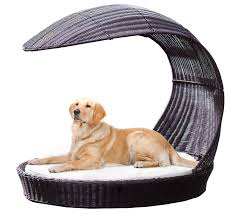 Top 6 - Fancy Dog Beds in 2018 | Dogs Recommend