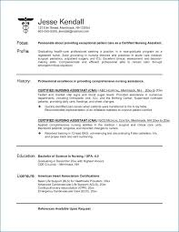 New Grad Rn Resume With No Experience Resume Example