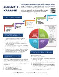 Infographic Resume Examples Resume Profile Ceo Therpgmovie 25