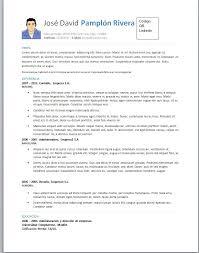 Ejemplos De Curriculum Vitae En Word Zooz1 Plantillas
