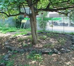 lentol garden