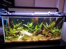 Funny Fish Tank Decorations Star Wars Fish Tank Accessories Star Wars Aquariums Zoe