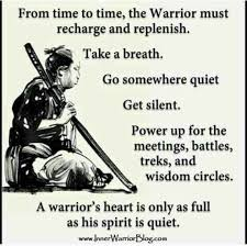 Warrior Quotes Gorgeous Wisdom Quotes Sometimes The Warrior Must Rest OMG Quotes Your