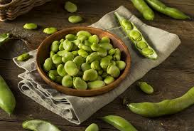 fava beans nutritional value recipes and health benefits top 10 home remes