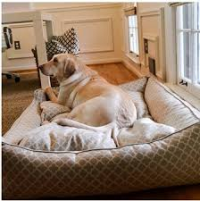 jax and bones. Interesting Jax Order A Jax And Bones Bedding For Your Beloved Pooch At Http3shadesofdog In And