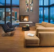 view in gallery two sided fireplace perfect for this spacious living room with large glass enclosure