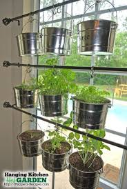 This beautiful hanging garden is our solution to for an indoor herb garden.  I love our house and we get GREAT sunlight in the windows, but there is no  ...