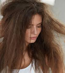 12 best hair oils for dry hair 2021