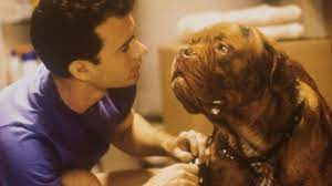 Turner & Hooch': First Look At The Dogs ...