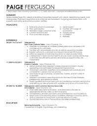 Insurance Resume Examples Thian Awesome Insurance Sales Resume