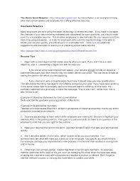 Resume Experience Summary Sample Sidemcicek Com