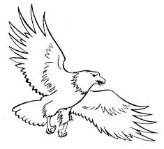 Small Picture Special Eagle Coloring Pages Nice KIDS Colorin 7445 Unknown