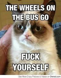 Memes Vault Angry Cat Memes via Relatably.com