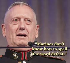 General Mattis Quotes Magnificent 48 Best General James Mad Dog Mattis Quotes