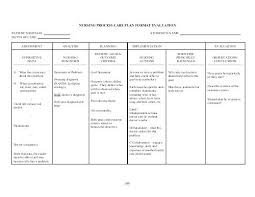Ng Patient Care Plan Example Plans Nursing Template