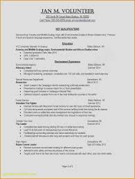 Unique 22 Action Verbs For Resume Action Words For Resumes