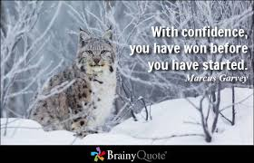 Confidence Quotes - BrainyQuote via Relatably.com