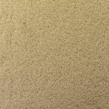 cream carpet texture. Castle Twist Cream Carpet Texture