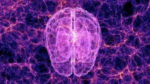 Image result for THE MIND CONSCIOUSNESS
