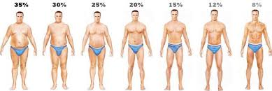 Body Fat Conversion Chart No More Bmi To Calculate Fat Levels Use Height And Waist