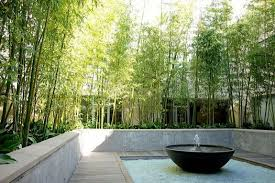 Small Picture Bamboo Garden Design Garden Design Ideas