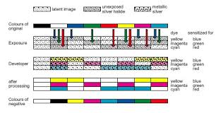 Colour Formation Chart Exposing And Processing The Photographic Paper