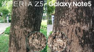 sony xperia z5 camera. sony xperia z5 camera