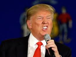 Image result for tt donald trump