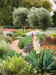 Small Picture 19 best Australian native garden images on Pinterest Australian