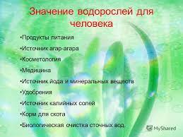 Хорея гентингтона ru Значение водорослей жизни человека реферат