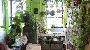 Create Kitchen Garden How To Green Your Home Part 1 Build An Indoor Vertical Garden