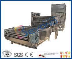 Sebze / Meyve Yıkama Makinesi Fırça Yıkama Makinesi CE / ISO9001 ile  Rolling Drum