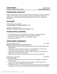 Entry Level Position Resume Objective Perfect Resume Format