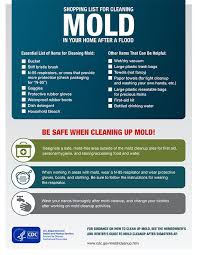 shopping list by department shopping list for cleaning mold after flood natural disasters