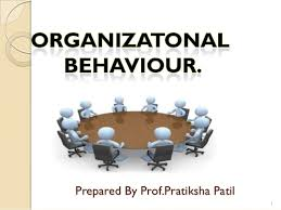 organisational behaviour organisational behaviour prepared by prof