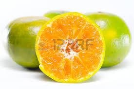 orange fruit names. Plain Names Orange Fruit Other Names Are Les Oranger Sweet Orange Citrus Sinensis  Citrus Throughout Fruit Names O