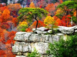 autumn mountains backgrounds. Free Fall Scenery Background Download. Autumn Mountains Backgrounds A
