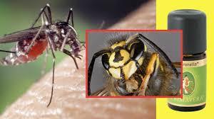 Insekten Vertreiben Mittel Gegen Mücken Wespen Und Co Utopiade