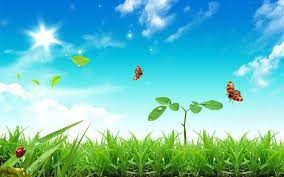 Green Nature Love Nature 图片Green 照片 ...