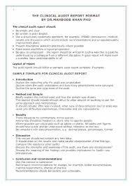 Findings Report Template Audit Format Sample Forensic