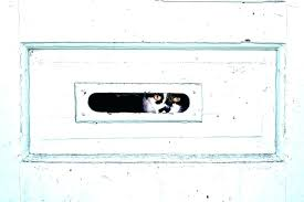 through wall mail slot sleeve watch cat photograph by noel door how boxes ph through wall mailbox