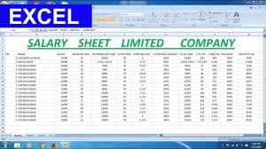 Salary Chart In Excel Format Salary Sheet Limited Company For Microsoft Excel Advance Formula