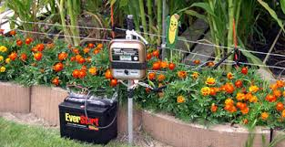 electric fence for garden. HOW TO BUILD A VEGETABLE GARDEN FENCE | EHOW Electric Fence For Garden L