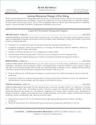 Good Resume Layout Resume Example