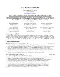 ... Creative Idea Senior Project Manager Resume 6 Senior Project Manager  Resume ...