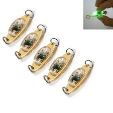 Build Your Own Green Fishing Light 5x 45mm Underwater Green Led Deep Drop Fishing Squid Lure Light Flashing Lamp Ebay