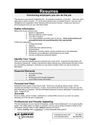 Resume For First Job Examples Resumes Example How Summary Objective